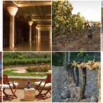 Valenciso, el rioja más moderno de los clásicos