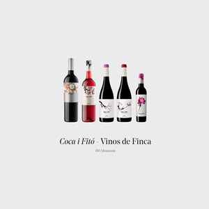 coca-i-fito-cata-presentacion-sala-de-catas-bouquet-by-quiero-delicatessen-villena-vino-wine-catas-
