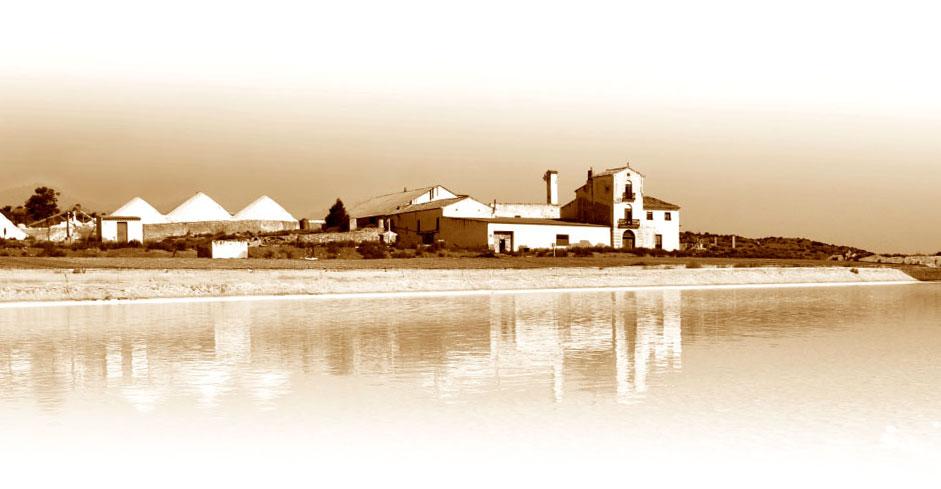 Fossil River sal de Villena - quiero delicatessen - sal - vilena
