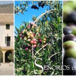 Señoríos de Relleu – Aceite de oliva virgen extra de la montaña de Alicante