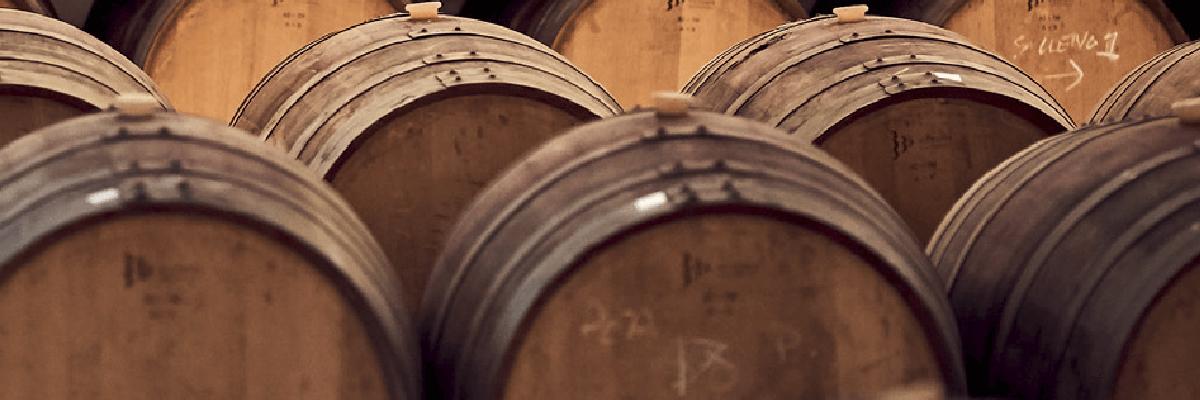 Fotografía de la bodega San Cobate - Vinos San Cobate - Quiero Delicatessen - Villena - Alicante - Vino - Vinos