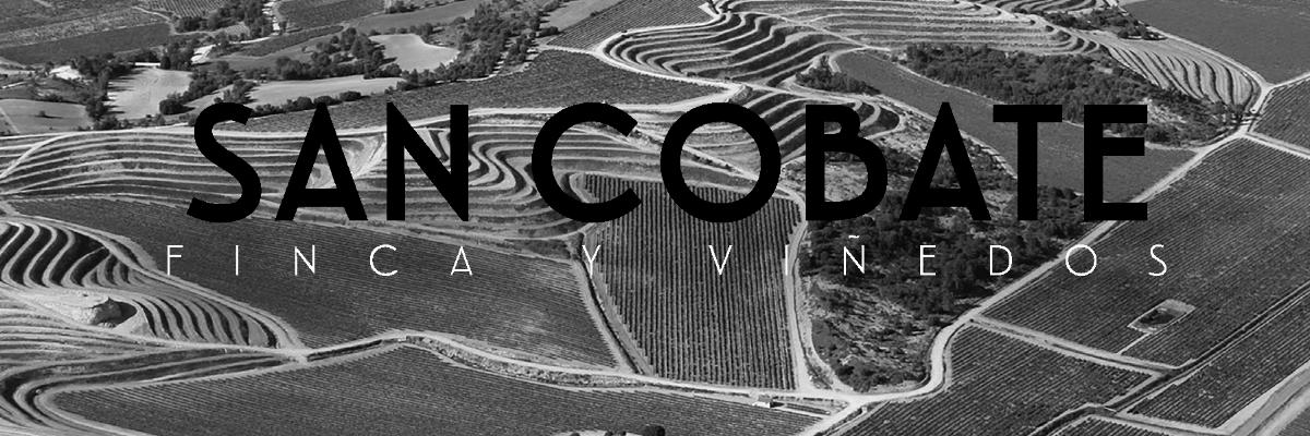 Fotografía de los viñedos San Cobate - Vinos San Cobate - Quiero Delicatessen - Villena - Alicante - Vino - Vinos